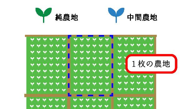 純農地と中間農地の評価単位