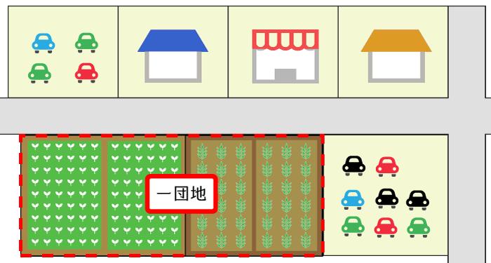 自用の農地が連接する場合の例