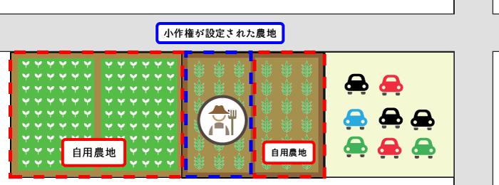 自用農地と耕作権が設定された農地が連接する場合の例